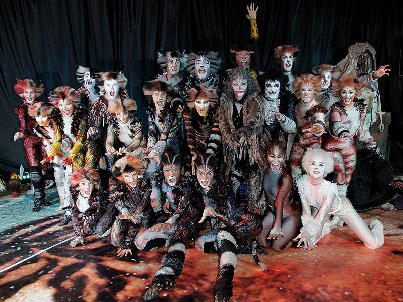 Cats Musical Hamburg  Cast